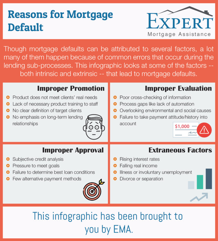 Reasons for Mortgage Default